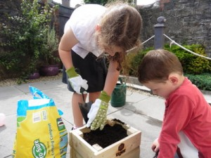 Children planting Lettuce Leaves