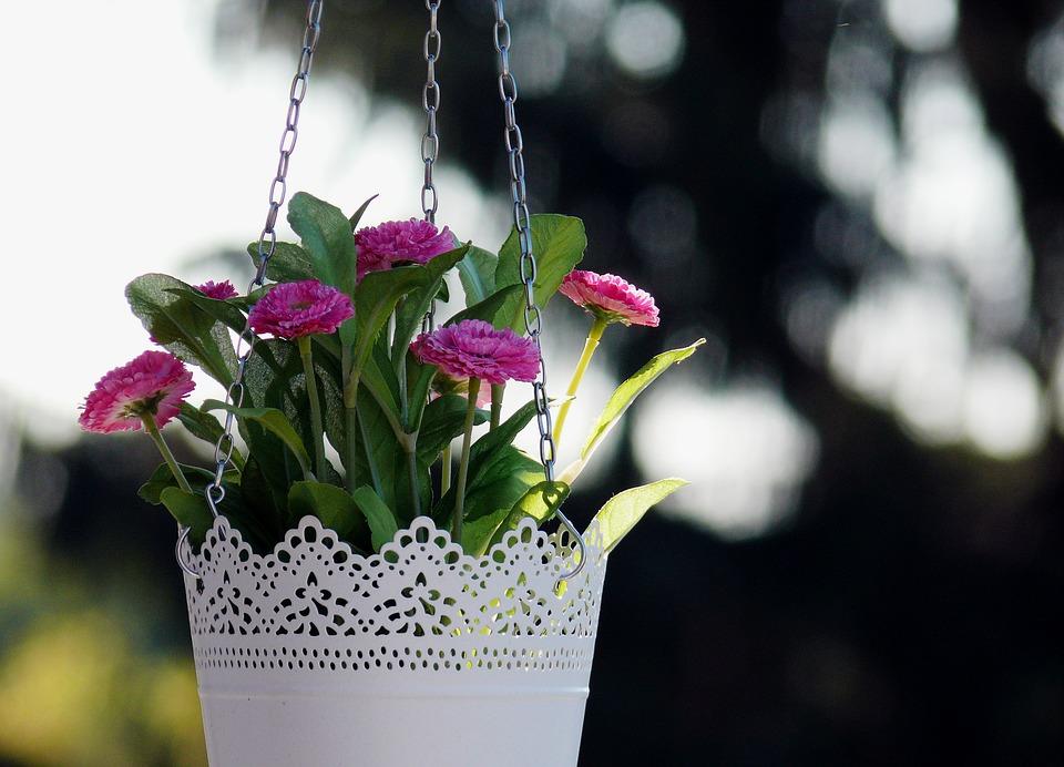 Haning flowers
