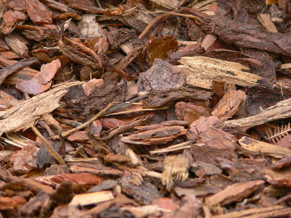 bark-mulch-958416_960_720