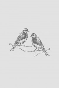 Paid of birds painting