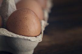 egg-1265735_960_720