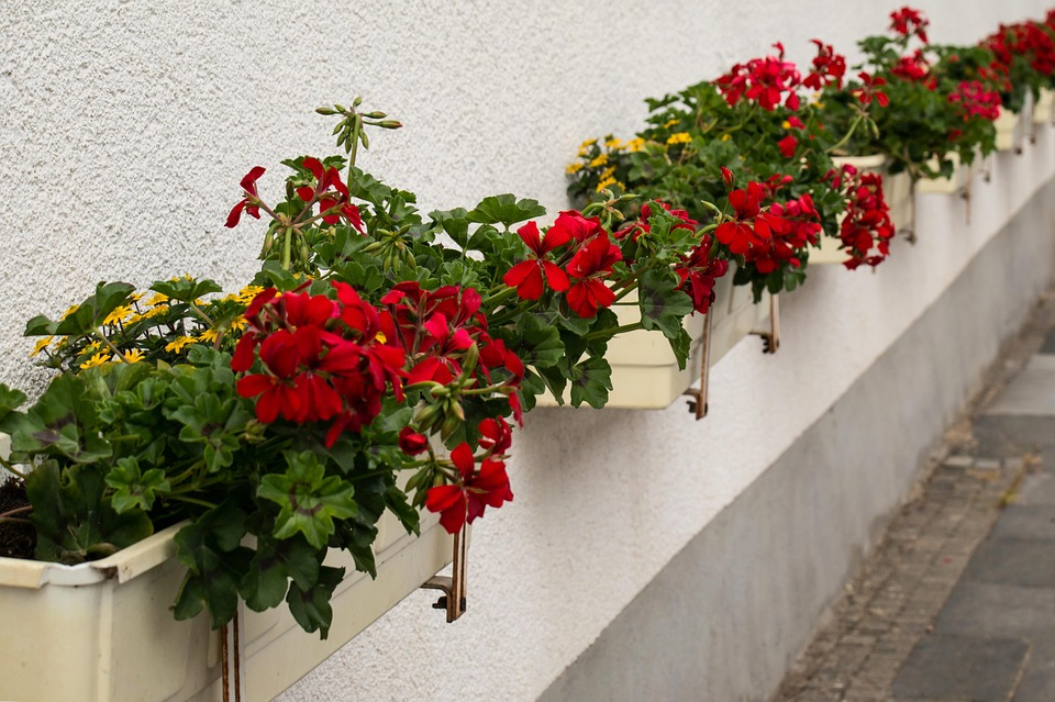 Add in colorful flowers for increasing curb appeal.