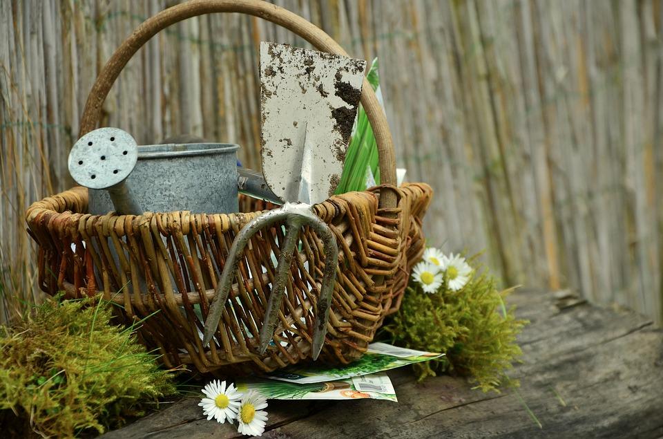 garden-gardening-1290908_960_720