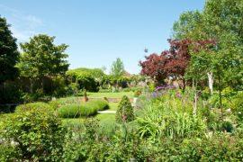 garden-in-may-by-lisa-valder-1600-pix-500x333