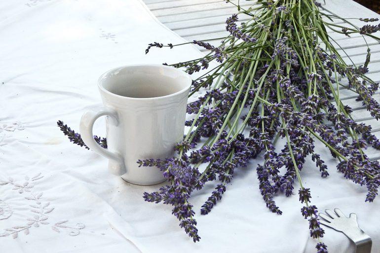 lavender-1636567_960_720