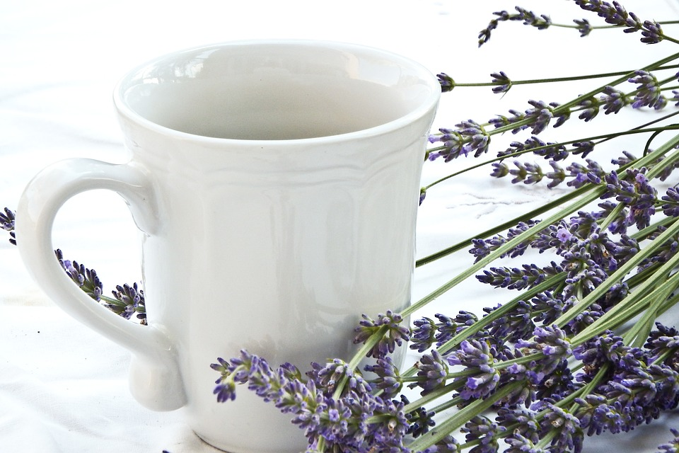 lavender-1636593_960_720