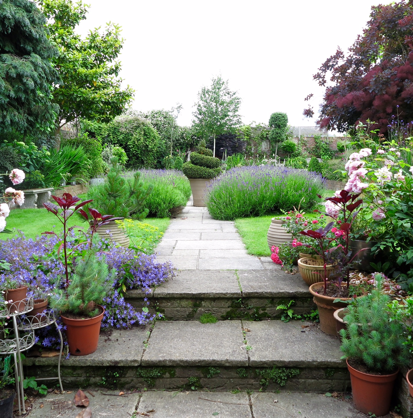parterre garden June 2016