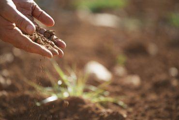 soil-1062912_960_720
