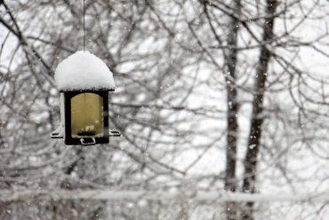winter-1428270_960_720