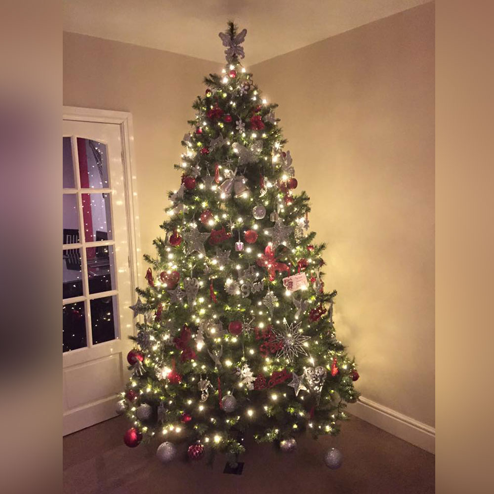 Christmas Decorating Tree Ideas